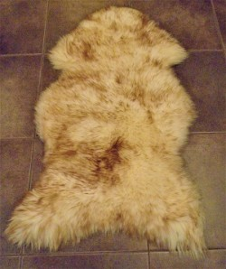 Natural tipped sheepskin rug